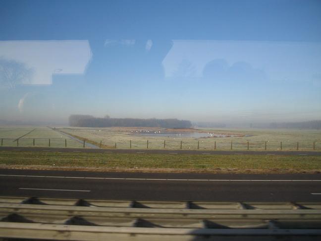Голландия из окна автобуса